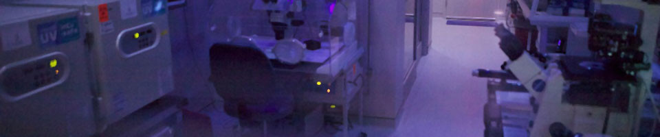 An Embryology Lab can culture an embryo to the blastocyst development stage.